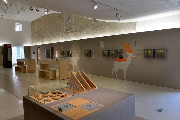 une des salles du musée de préhistoire